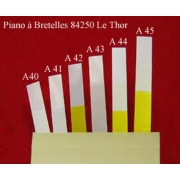 A42 - Peau musique plastique (31 x 6 mm)
